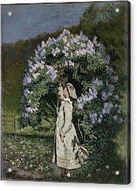 The Lilac Bush Acrylic Print by Olaf Isaachsen