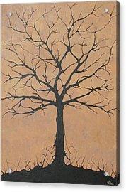 the Lindsey Tree Acrylic Print by Julia Raddatz