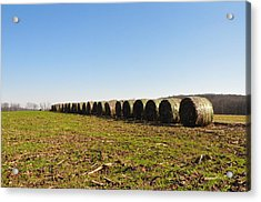 The Line Up Acrylic Print by Bill Cannon