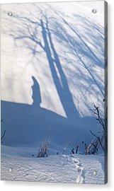 The Lone Path Taken Acrylic Print