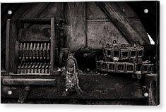 The Machine Acrylic Print by Tim Nichols