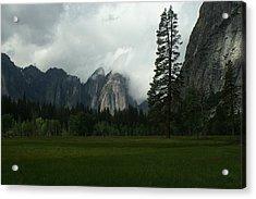 The Meadow The Tree The Fog Acrylic Print