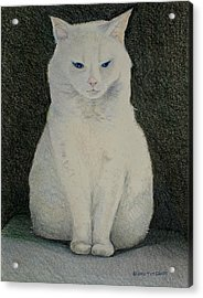 The Meditating Cat Acrylic Print