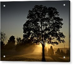 Acrylic Print featuring the photograph The Morning Light by Nick Mares