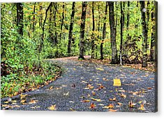 The Mount Vernon Trail. Acrylic Print by JC Findley