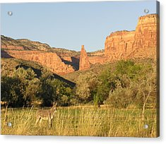 The Mule And Independence Rock Acrylic Print