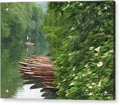 The Neckar River Acrylic Print by Nikolay Vakatov