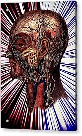 The Nerve Acrylic Print by Nok