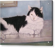 The Office Cat Acrylic Print by Teresa LeClerc