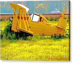 The Old Crop-duster Acrylic Print