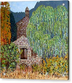 The Old Willow Tree Acrylic Print by Caroline Street