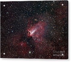 The Omega Nebula Acrylic Print by Filipe Alves