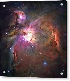 The Orion Nebula Was Born In Enormous Acrylic Print by Nasa