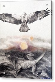 The Osprey And The Lizard Acrylic Print