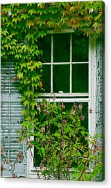 The Other Window Acrylic Print by Lisa  DiFruscio