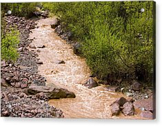 The Ourika River In Spate Acrylic Print by Bob Gibbons