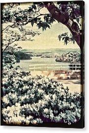 The Overlook Acrylic Print