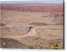 The Painted Desert  8042 Acrylic Print by James BO  Insogna