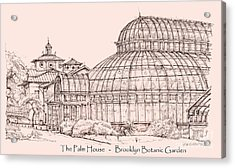 The Palm House In Pink Acrylic Print by Adendorff Design
