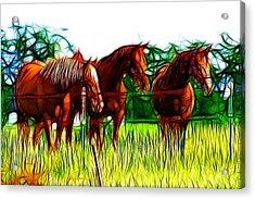 The Pasture Acrylic Print