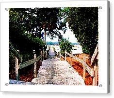 The Path Acrylic Print by Brenda Leedy