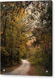 The Path Less Traveled 2 Acrylic Print by Jai Johnson