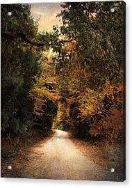 The Path Less Traveled Acrylic Print by Jai Johnson