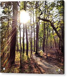 The Path Of Life Acrylic Print