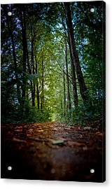 The Pathway In The Forest Acrylic Print