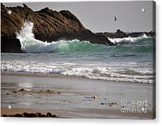Acrylic Print featuring the photograph The Point by Johanne Peale