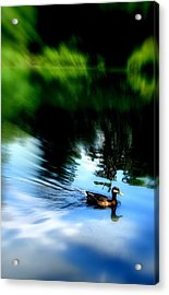 The Pond - Central Park Nyc Acrylic Print by Maria Scarfone
