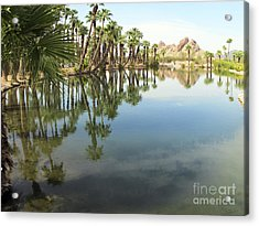 Acrylic Print featuring the photograph The Pond by Leslie Hunziker