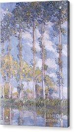 The Poplars Acrylic Print by Claude Monet