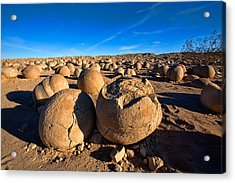 The Pumpkin Patch Acrylic Print by Peter Tellone