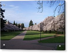 Acrylic Print featuring the photograph The Quad by Jerry Cahill