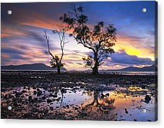 The Reflex Of Tree In Sunset Acrylic Print by Arthit Somsakul