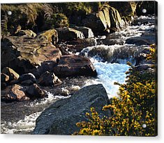 The River Caldew Acrylic Print