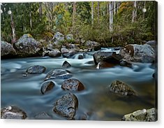 The River Wild Acrylic Print by Mark Lucey