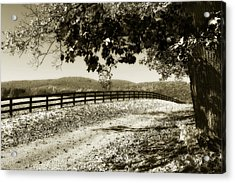 The Road Home -2 Acrylic Print by Alan Hausenflock