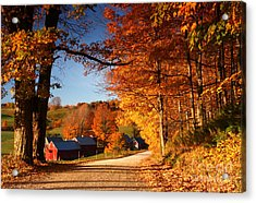 The Road To The Jenne Farm Acrylic Print by Butch Lombardi