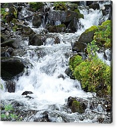 Acrylic Print featuring the photograph The Roadside Stream by Chalet Roome-Rigdon