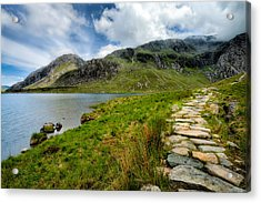 The Rocky Path Acrylic Print by Adrian Evans