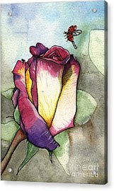 The Rose Acrylic Print by Nora Blansett