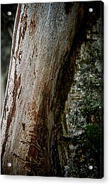 The Rough And The Smooth Acrylic Print by Odd Jeppesen