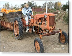 The Scarecrow Riding On The Old Farm Tractor . 7d10300 Acrylic Print by Wingsdomain Art and Photography