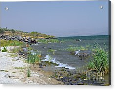 The Sea Of Galilee Acrylic Print by Eva Kaufman