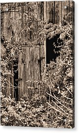 The Secret Door Acrylic Print by JC Findley