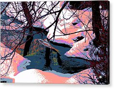 The Shades Of Winter Acrylic Print by Shirley Mailloux