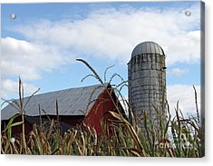 Acrylic Print featuring the photograph The Silo by Denise Pohl