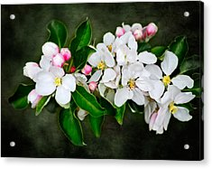 The Smell Off Spring Acrylic Print